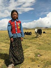 チベットの少女